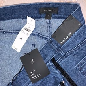 Ann Taylor Side Striped Mid Rise Skinny Jeans
